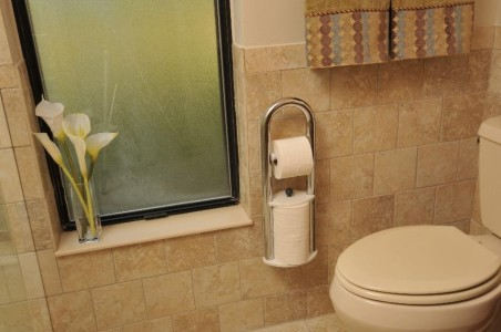 Attractive, thoughfully installed balance bars beside toilet
